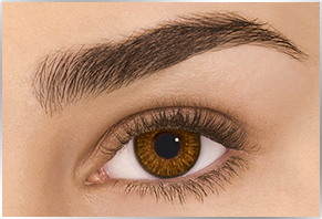 FreshLook ColorBlends Brown, 2 szt.